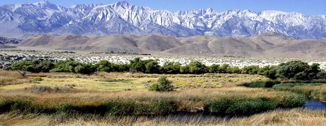 Lower Owens River Project Draft Report