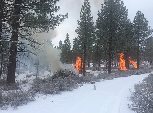 Pile Burning at June Lake and Mammoth Lakes