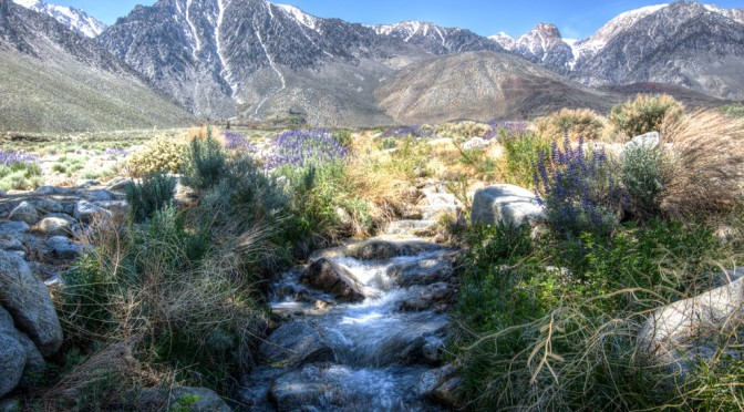 Inyo bringing back Talking Water Workshops
