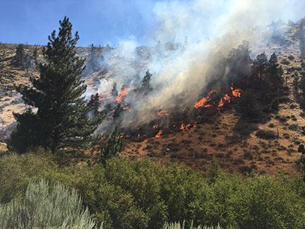 LOCAL FIRE UPDATES