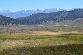 Eastern Sierra Land Trust Secures 1,424 Acre Ullman Ranch