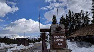 Tioga Road Now Opened to Yosemite Gate, Ellery Lake Trout Await Anglers